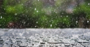 Oman Weather, Rain in Oman, Oman Day, Rain in Dhofar, Oman Day news, Muscat news, Oman weather updates