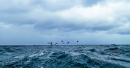 Medium to rough waves in Oman's coastal areas: Oman Meteorology