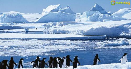 Top 10 coldest places in the world you should never visit