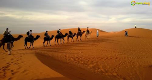 Check out Top 5 Biggest Deserts in the World