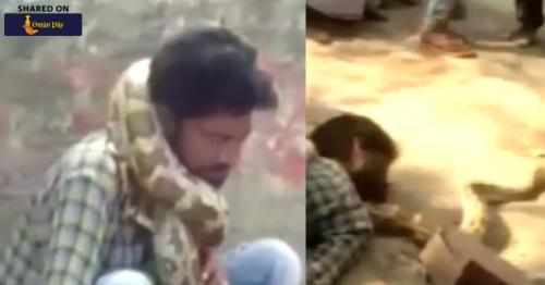 On cam: Python attacks snake charmer in UP's Mau