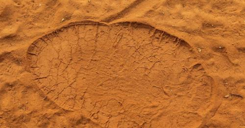 Primitive elephant footprints excavated in Oman