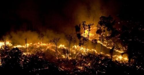 WildFire in Amazon, latest amazon fire news,  International news, Amazon wildfire