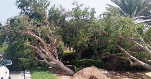Oman Day, Oman news, Hikaa latest updates, Hikaa cyclone, latest Oman news, Duqm news, Duqm Hikaa, Muscat news, Oman local news