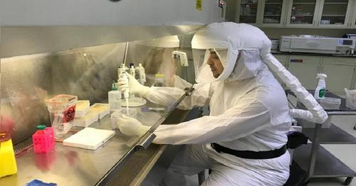 Coronavirus recoveries in Saudi Arabia outpace new infections