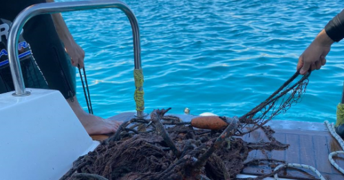 Campaign to remove fishing nets implemented in Oman