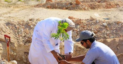 Duqm Special Economic Zone begins afforestation programme