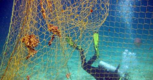 Fishing net removal campaign concludes at nature reserve in Oman