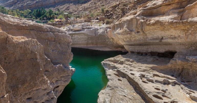 Omani dies after being rescued