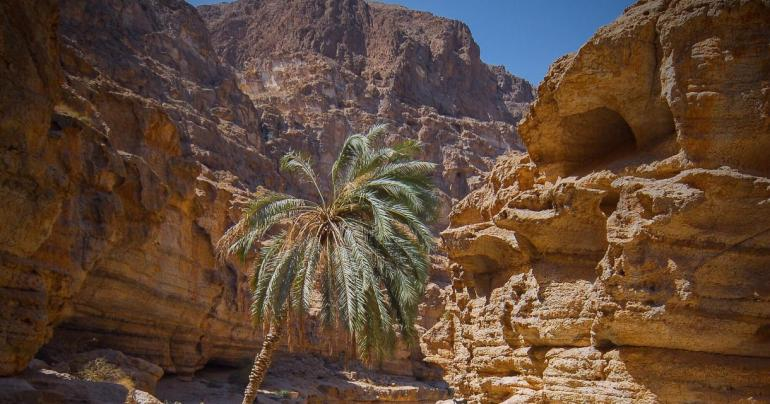 Misconceptions in the Middle East: why Oman is the ultimate Arabian adventure