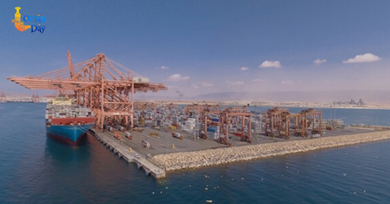 Oman's ports to receive more livestock this month